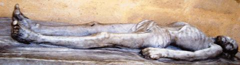 Ароматното тяло