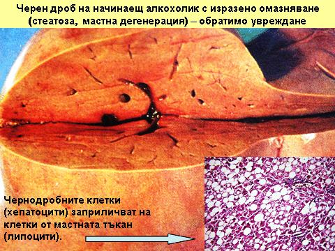 Kovarni_Napitki_4