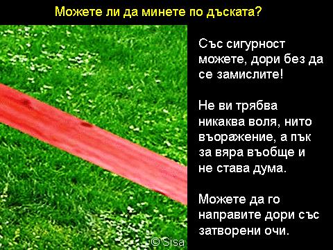Volia_Viara_1