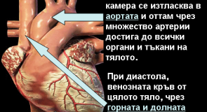 Видове артериална хипертония